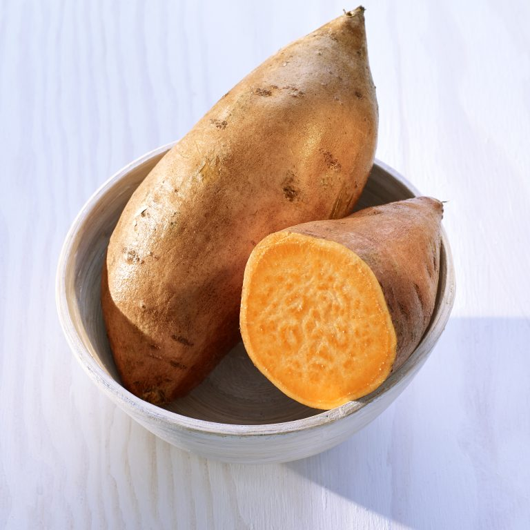Suesskartoffeln North Carolina
